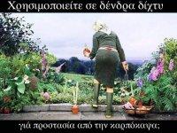 FB_IMG_1631871078135.jpg